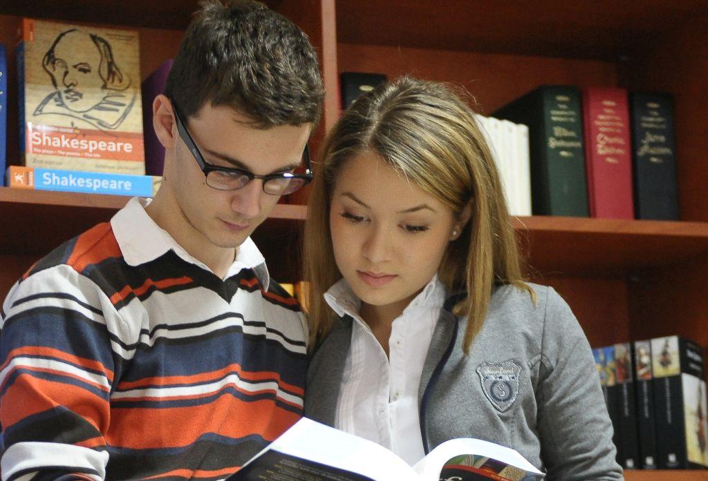 Program cursuri de limba engleza – pregatire …